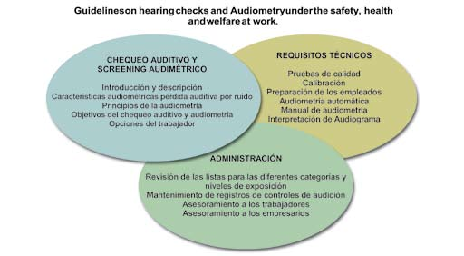 Guidelines on Hearing Checks and Audiometry under the Safety, Health and Welfare at Work. Fuente: Elaboración propia.