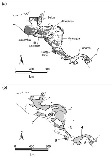 M. G. Hidalgo-Mihart et al. Figure 5 (a) Predicted geographic distribution of coyote in Central America using GARP.
