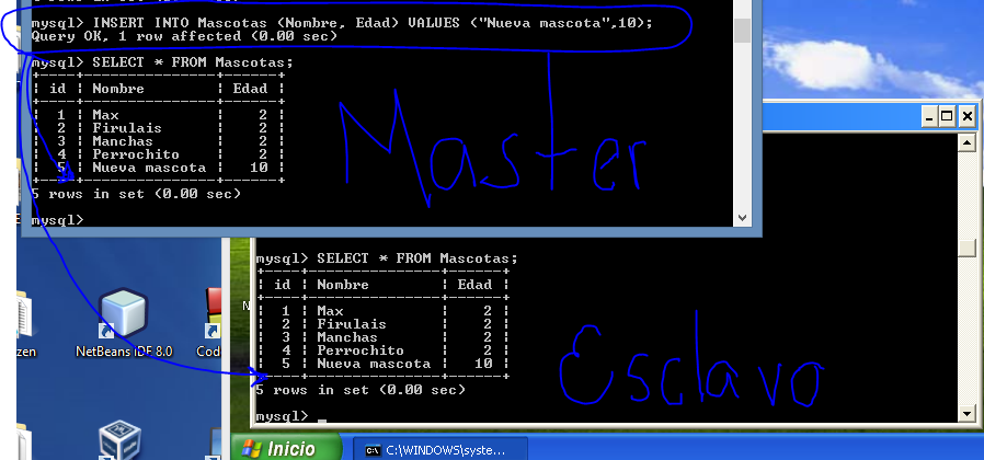 "CHANGE MASTER TO master_host=""192.168.56.1"", master_user=""replicador"", master_password='1234', master_log_file='mysql-bin.000001', master_log_pos=98; 18."