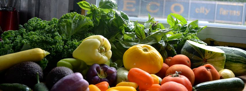 Preferred time: GET A WEEKLY BAG OF FRESH PRODUCE THROUGHOUT THE WINTER Beginning November 13, ECO City Farms will be offering weekly farm shares of locally grown produce to Prince George s County