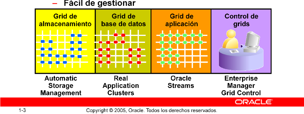 Base de Datos Oracle 10g: g Significa Grid Global Grid Forum (GGF) es un organismo que desarrolla estándares para Grid Computing.