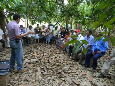 COFFEE AND COCOA Pilot program in Tabasco and Chiapas 1. Training of producers 2. Sustainable practices in production 3. 30% increase in productivity 4.
