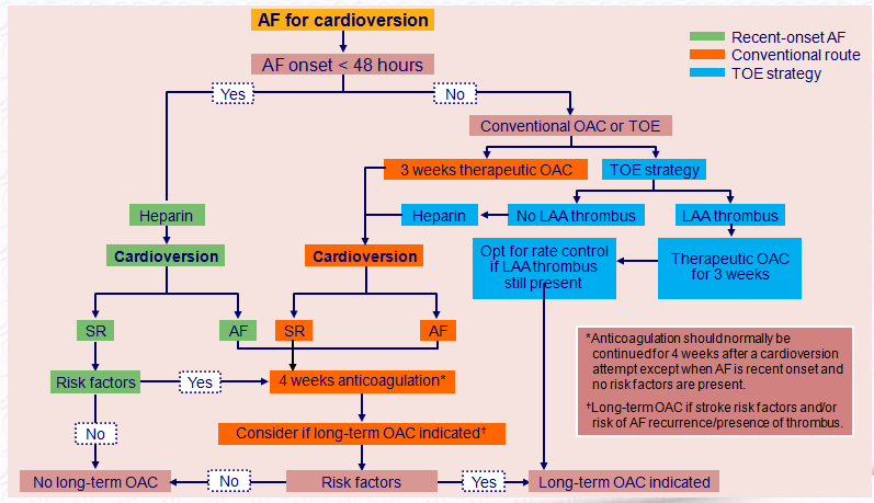 Cardioversion, TOE and anticoagulation AF = atrial fibrillation; DCC = direct current cardioversion; LA = left atrium; LAA = left atrial appendage; OAC