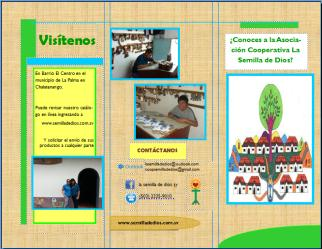 4.3.1.7.2.2 Brochure a nivel internacional.