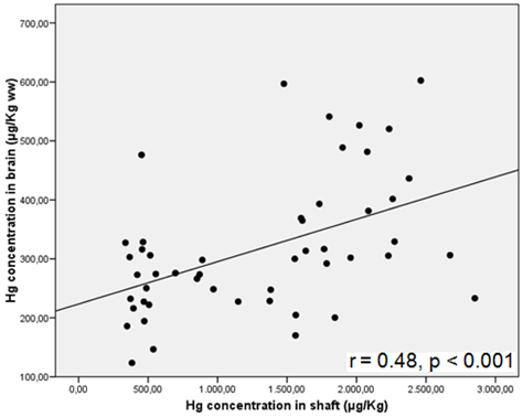 Figure 12. Relationship between mercury concentrations in Razorbill tissues (continued).