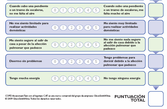 www.catestonline.org 53 idiomas +2 en desarrollo Jones PW et al.