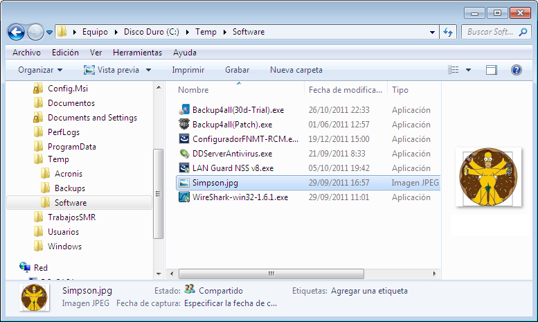 Explorador de Windows: Selección Panel de Vista Previa