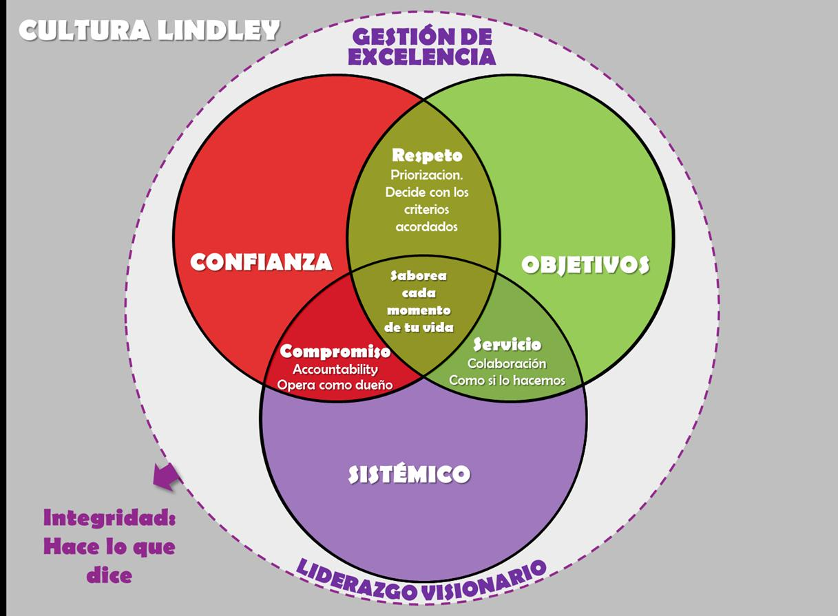 Memoria anual corporaci n lindley pdf for Lindley trabajo