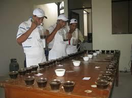 SHOW 26th DE Annual BARISMO Exposition Specialty Coffee SESIONES DE CATA Y BARISMO,