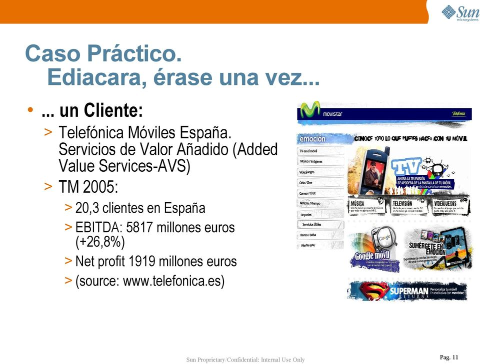 Servicios de Valor Añadido (Added Value Services-AVS) > TM 2005: > 20,3
