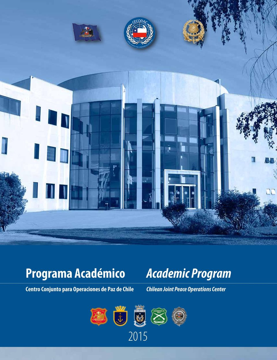 Academic Program Chilean Joint Peace