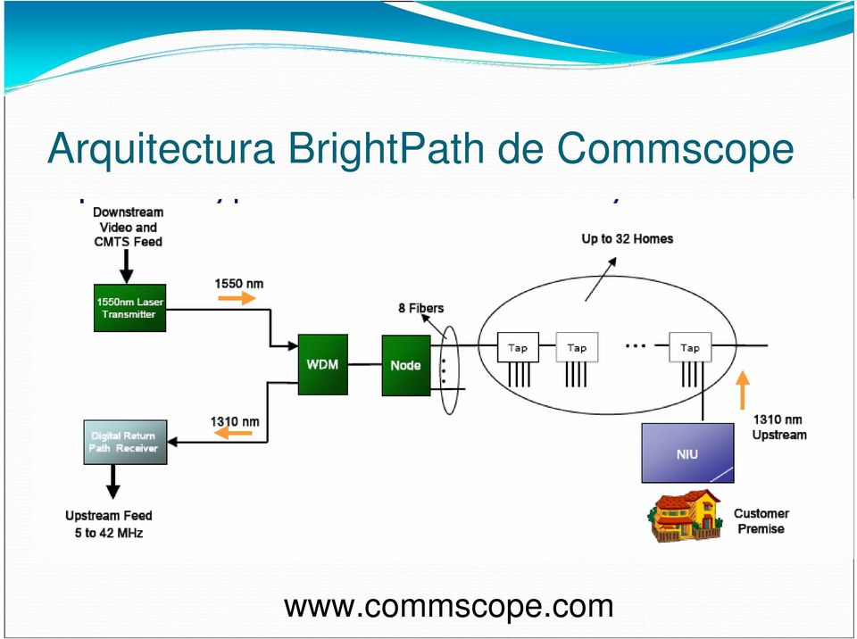 Commscope www.
