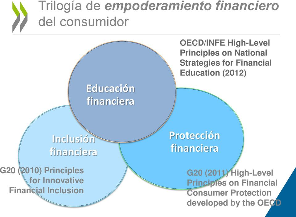 financiera G20 (2010) Principles for Innovative Financial Inclusion Protección
