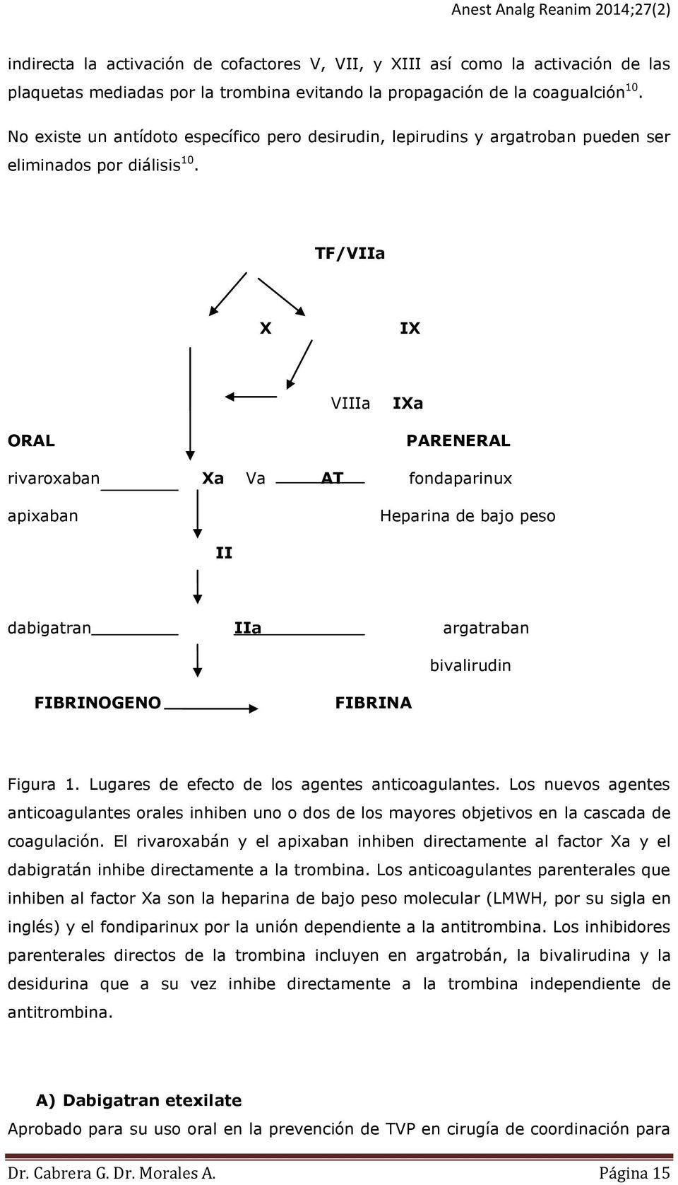 TF/VIIa X IX VIIIa IXa ORAL PARENERAL rivaroxaban Xa Va AT fondaparinux apixaban Heparina de bajo peso II dabigatran IIa argatraban bivalirudin FIBRINOGENO FIBRINA Figura 1.
