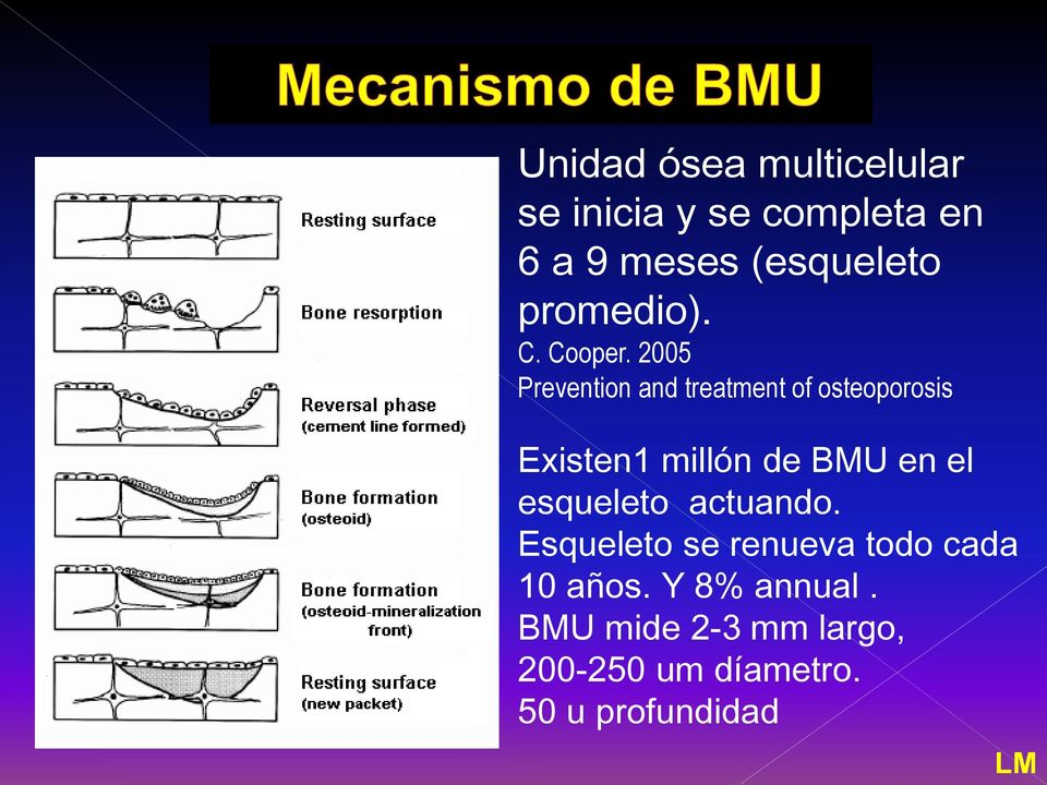 2005 Prevention and treatment of osteoporosis Existen1 millón de BMU en el