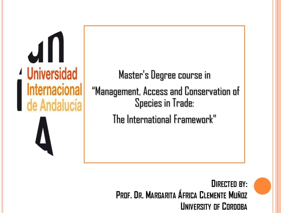 International Framework DIRECTED BY: PROF. DR.