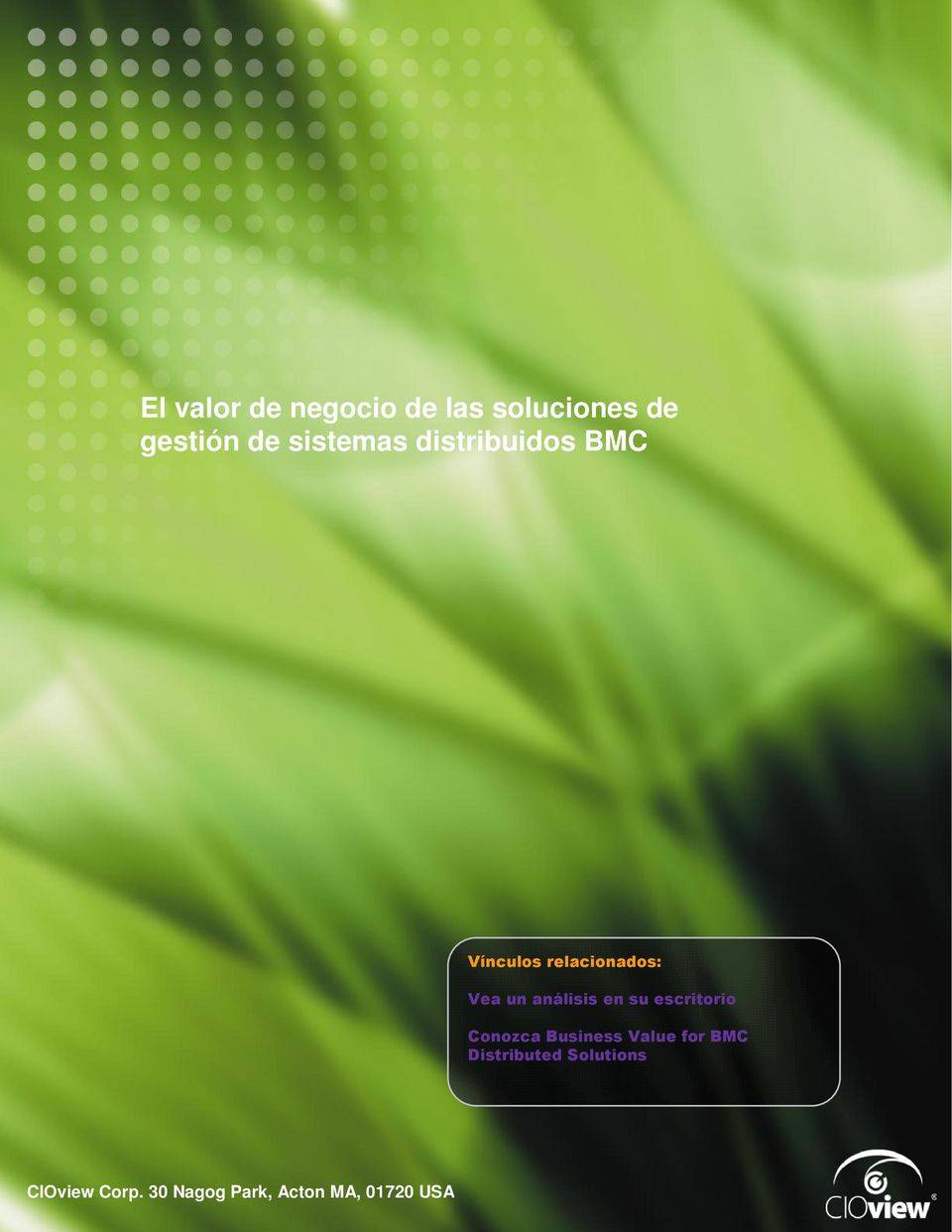 BMC Distributed Solutions White Paper de CIOview: The Business Value of BMC