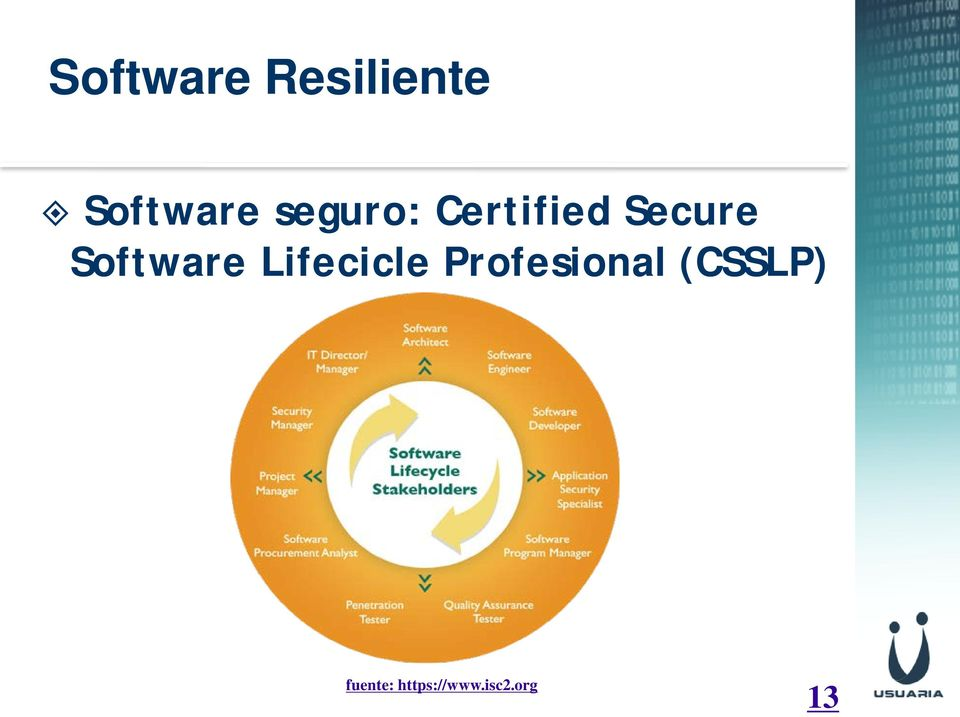 Software Lifecicle Profesional