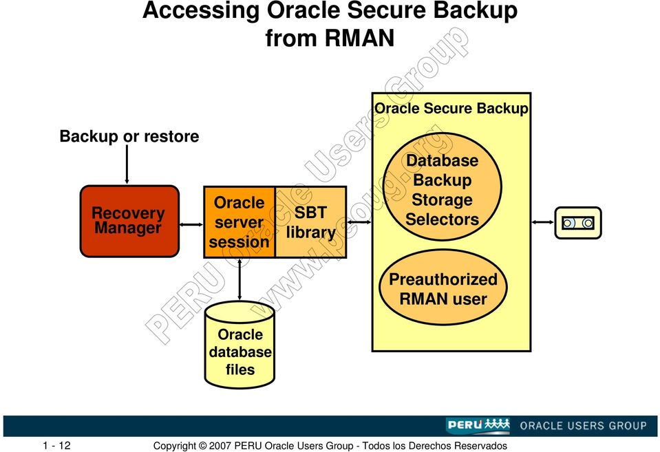 Oracle server session SBT library Database Backup