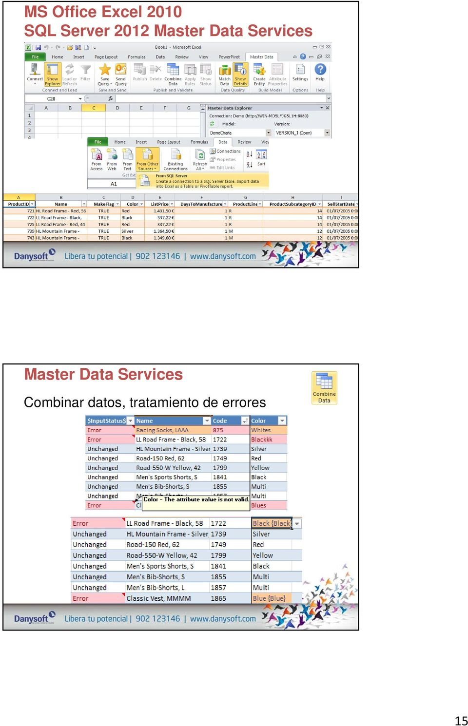 Services Master Data Services