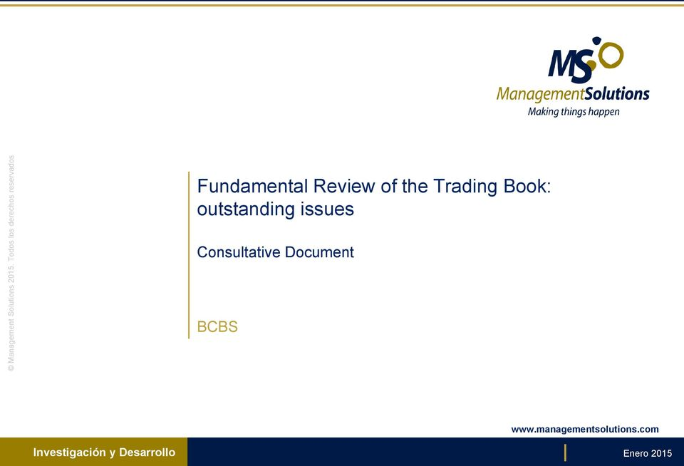 Book: outstanding issues Consultative Document BCBS www.