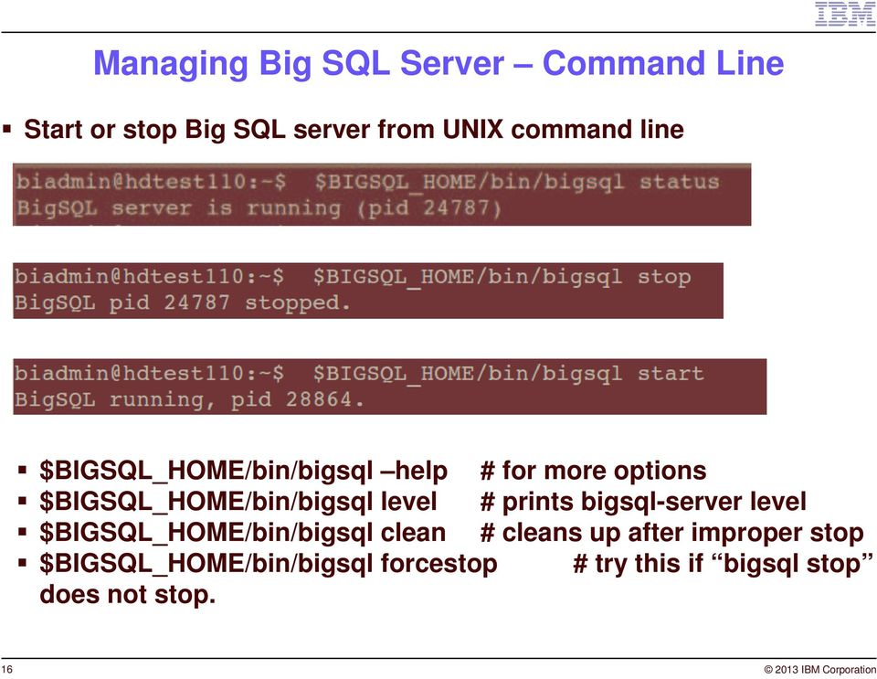 bigsql-server level $BIGSQL_HOME/bin/bigsql clean # cleans up after improper stop