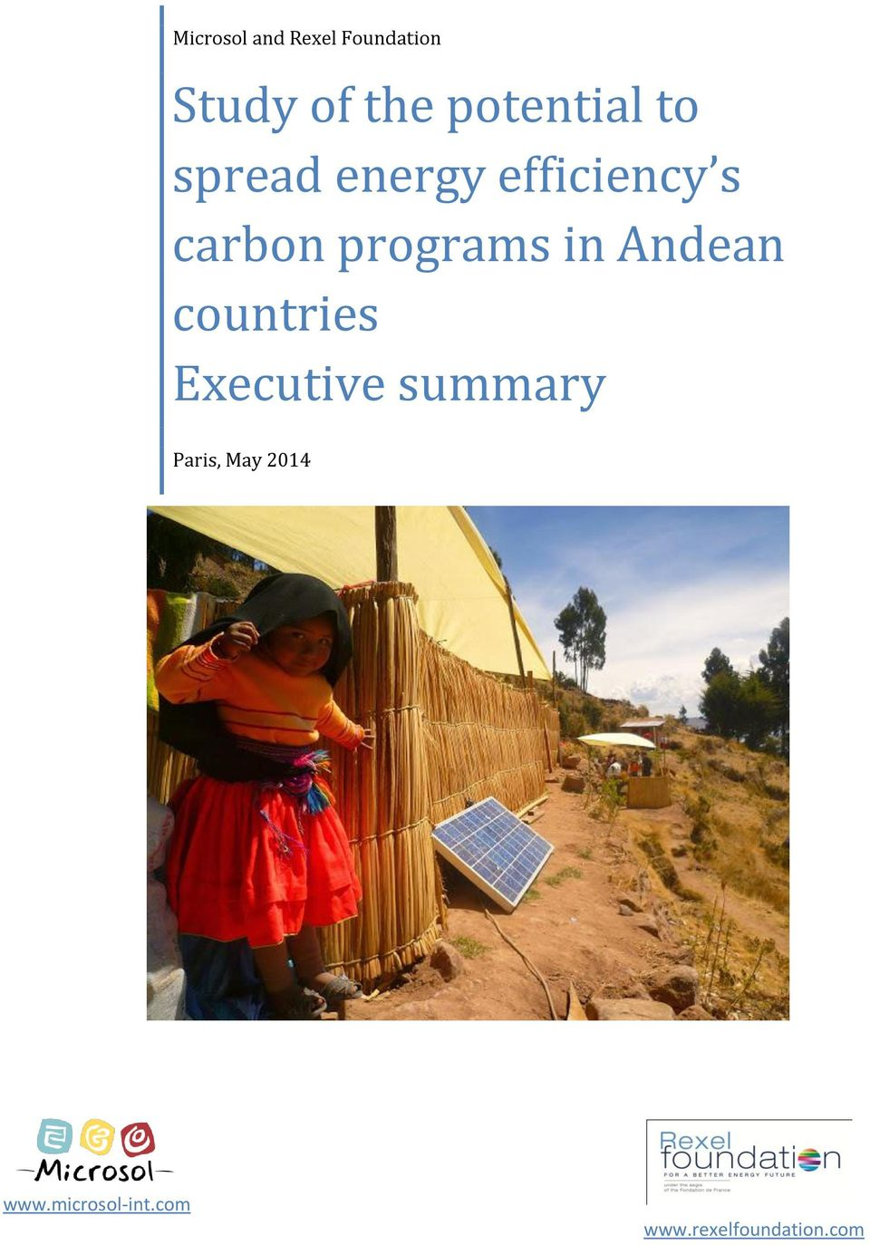 programs in Andean countries Executive summary