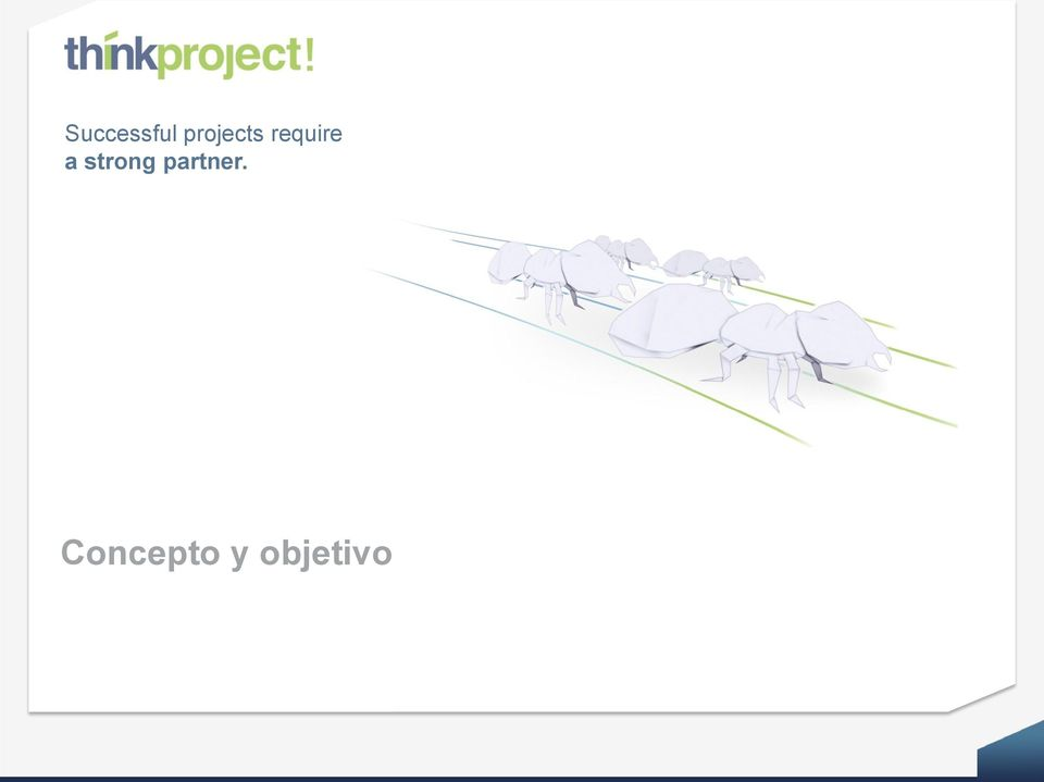 Concepto y objetivo think project!
