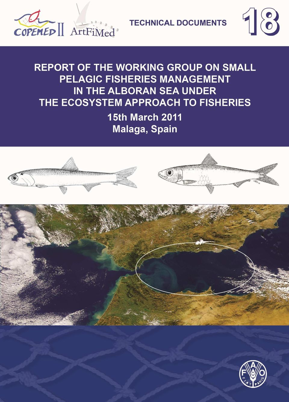 GROUP ON SMALL PELAGIC FISHERIES MANAGEMENT IN THE