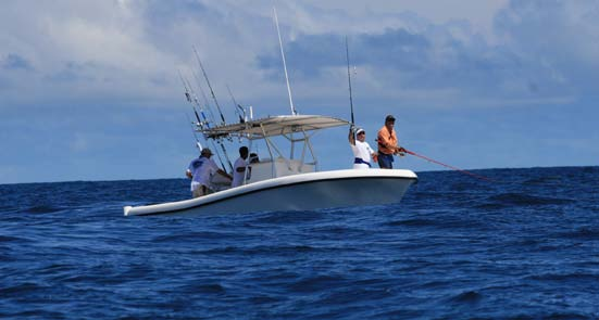 The organization s keystone program, the traditional tagging program, began in 1990. Today, it is the largest international billfish tagging program in the world.