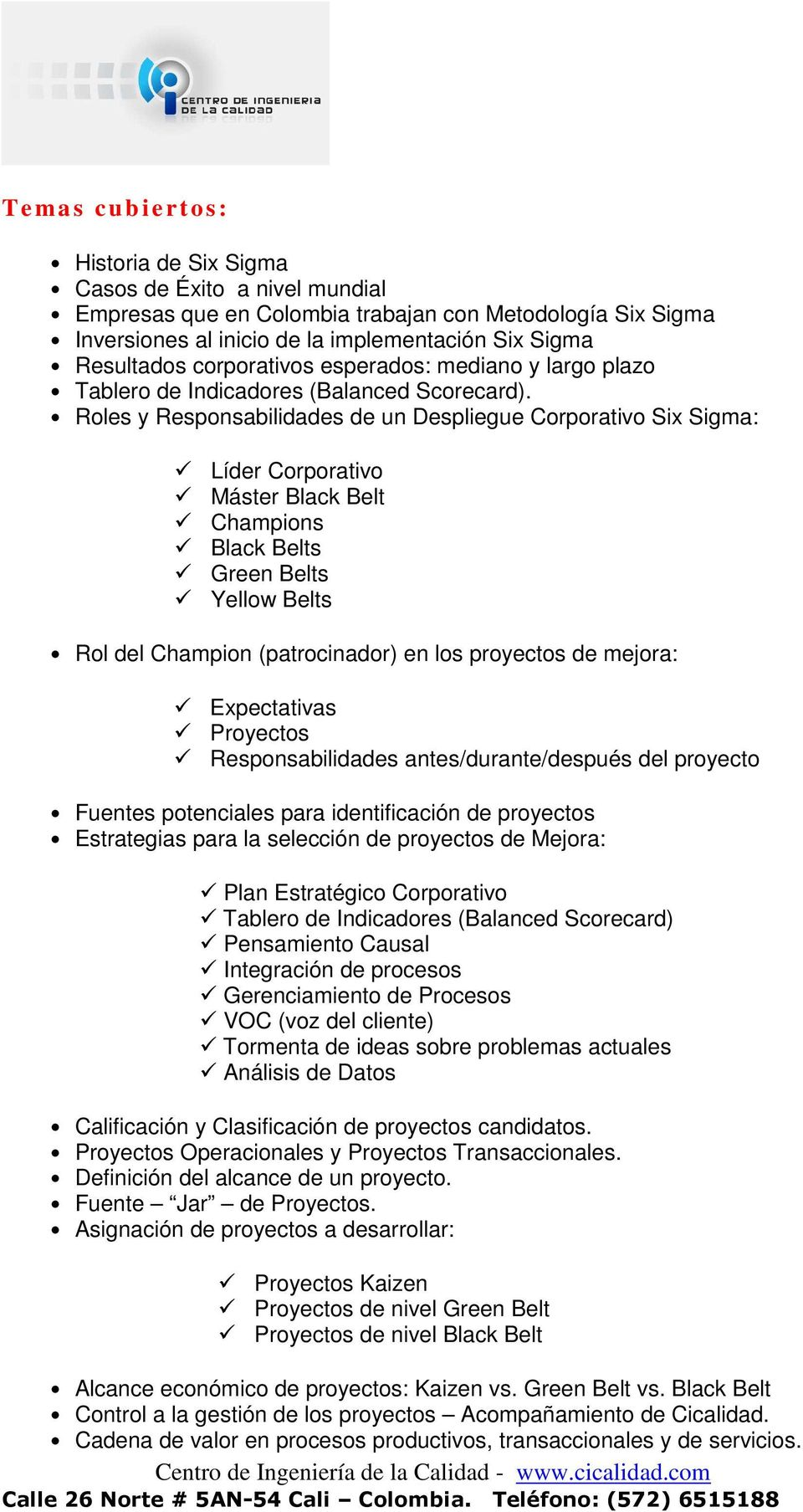 Roles y Responsabilidades de un Despliegue Corporativo Six Sigma: Líder Corporativo Máster Black Belt Champions Black Belts Green Belts Yellow Belts Rol del Champion (patrocinador) en los proyectos