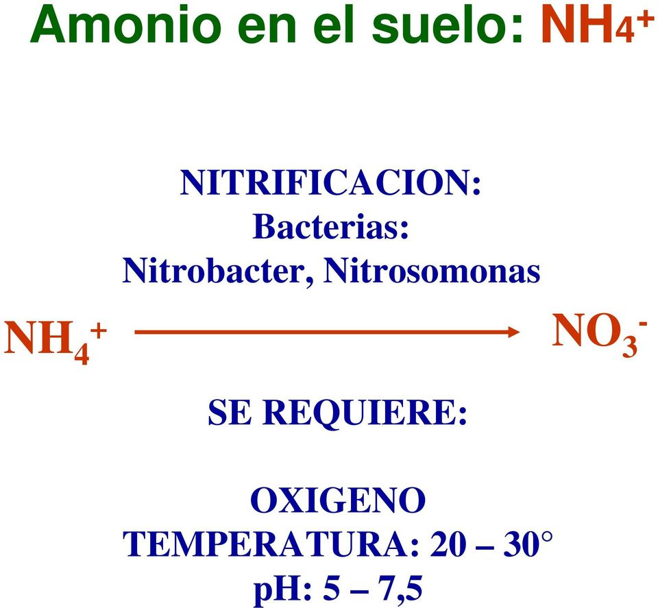 Nitrobacter, Nitrosomonas NH 4 + NO