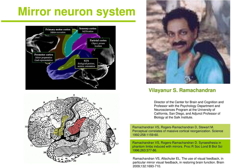 Diego, and Adjunct Professor of Biology at the Salk Institute. Ramachandran VS, Rogers-Ramachandran D, Stewart M. Perceptual correlates of massive cortical reorganization.