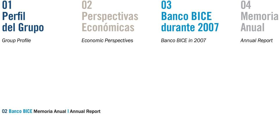 Profile Economic Perspectives Banco BICE in 2007