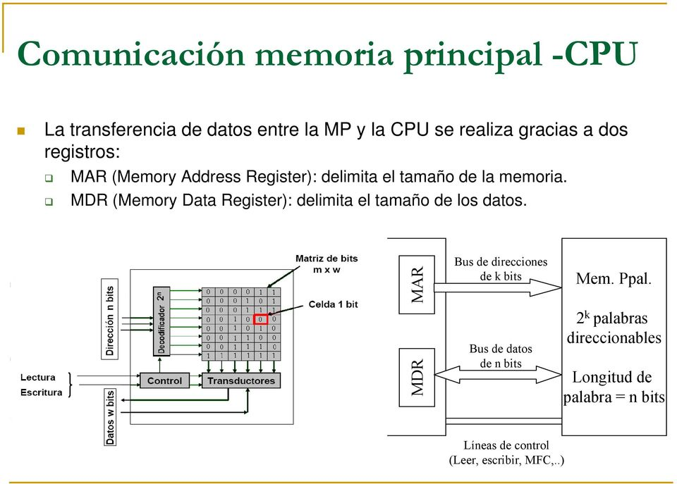 MDR (Memory Data Register): delimita el tamaño de los datos.