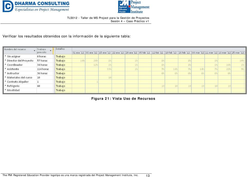 siguiente tabla: Figura 21: Vista Uso de Recursos The PMI Registered
