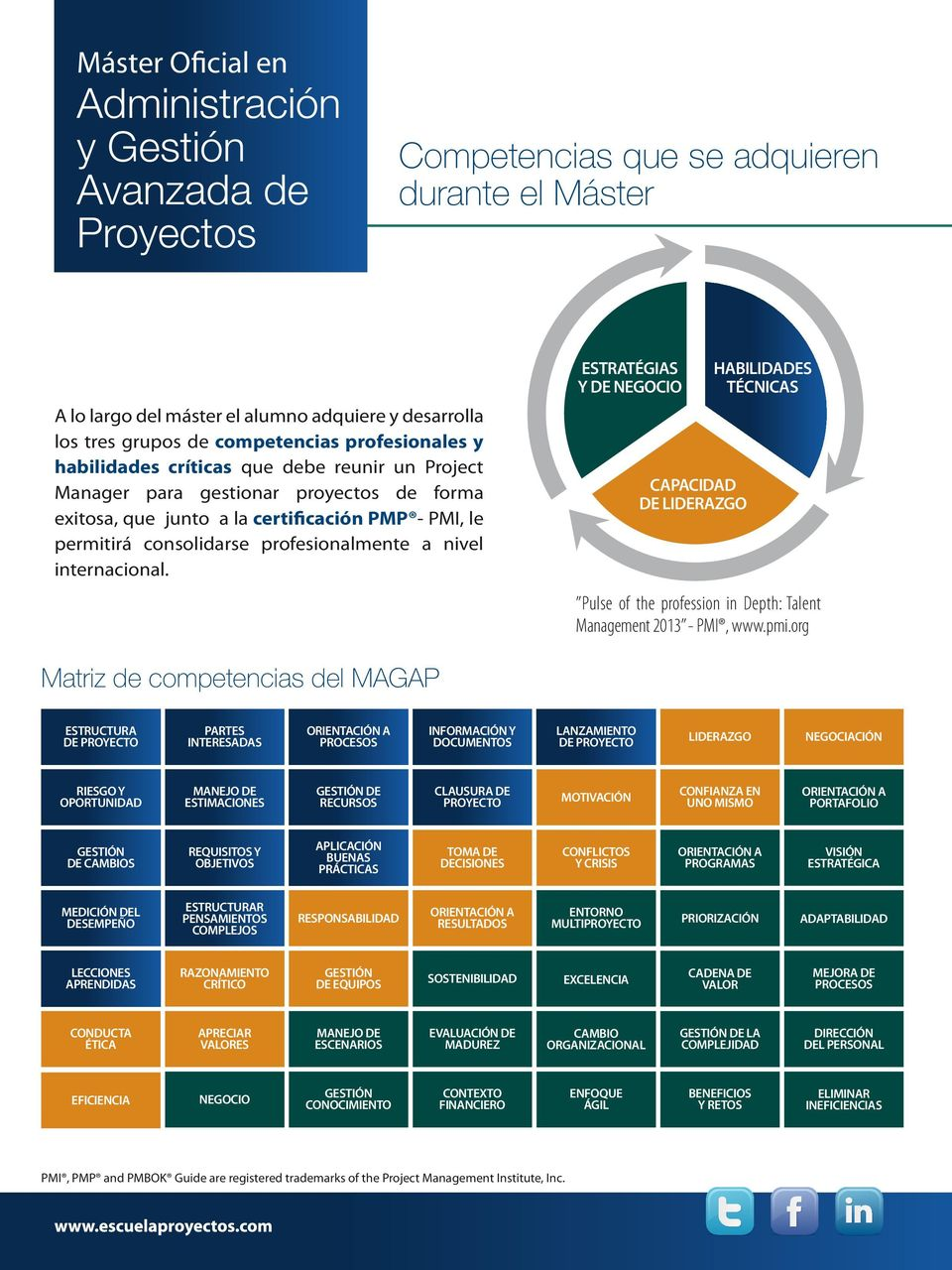 nivel internacional. ESTRATÉGIAS Y DE NEGOCIO CAPACIDAD DE LIDERAZGO HABILIDADES TÉCNICAS Pulse of the profession in Depth: Talent Management 2013 - PMI, www.pmi.