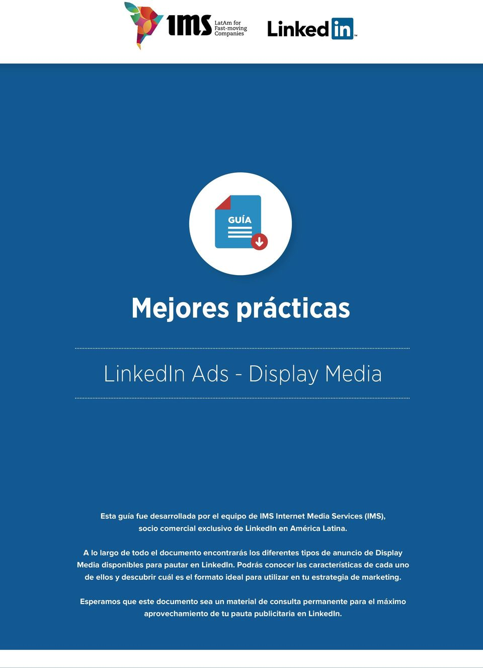 lo largo de todo el documento encontrarás los diferentes tipos de anuncio de Display Media disponibles para pautar en LinkedIn.