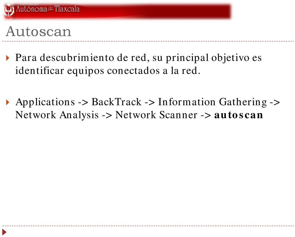red. Applications -> BackTrack -> Information