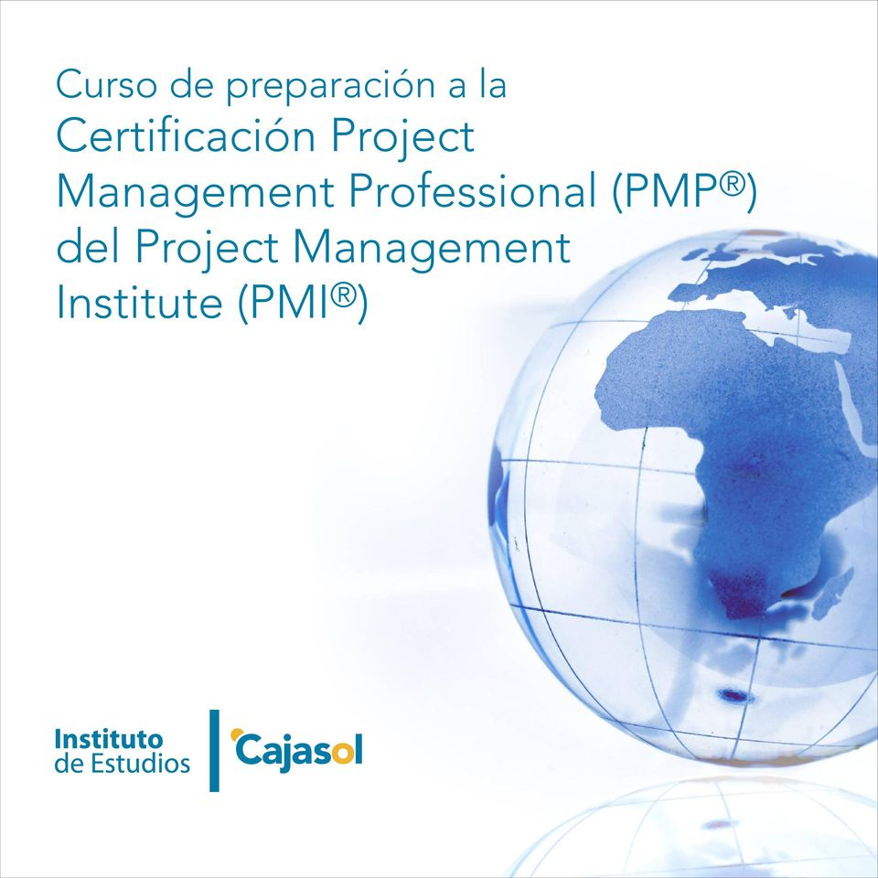 Management Professional (PMP