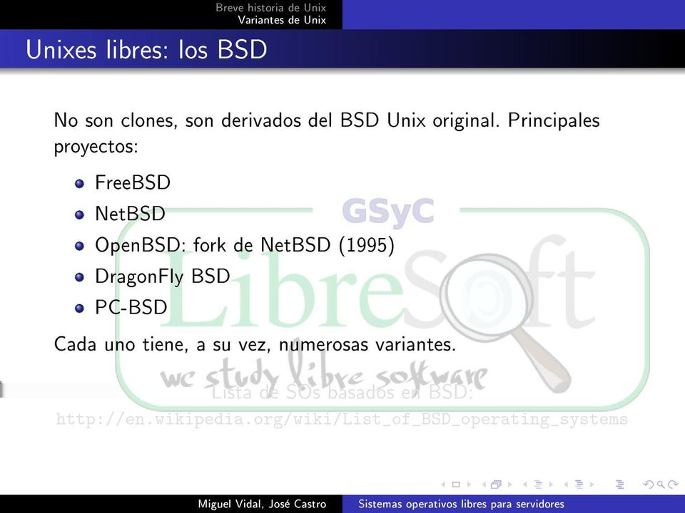 Principales proyectos: FreeBSD NetBSD OpenBSD: fork de NetBSD (1995) DragonFly
