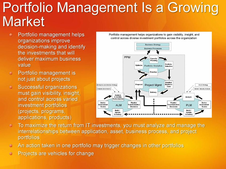 portfolios (projects, programs, applications, products) To maximize the return from IT investments, you must analyze and manage the interrelationships between