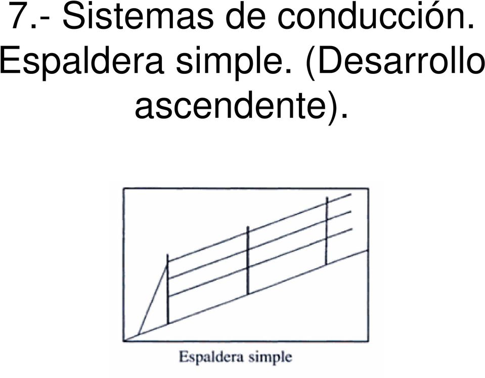 Espaldera simple.