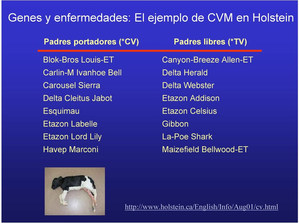 Havep Marconi Padres libres (*TV) Canyon-Breeze Allen-ET Delta Herald Delta Webster Etazon Addison