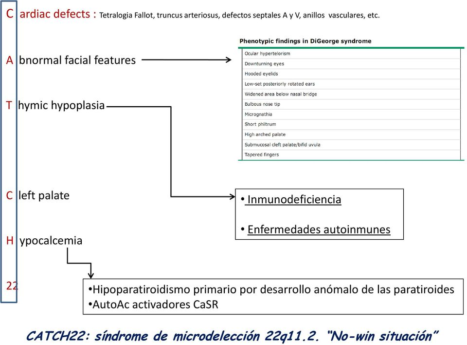 A bnormal facial features T hymic hypoplasia C left palate H ypocalcemia Inmunodeficiencia
