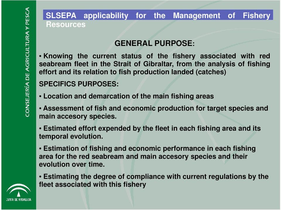 production for target species and main accesory species. Estimated effort expended by the fleet in each fishing area and its temporal evolution.