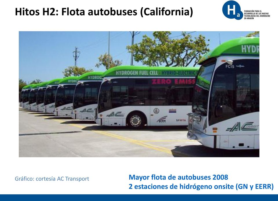 Transport Mayor flota de autobuses