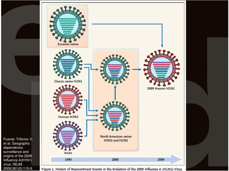 and origins of the 2009 Influenza