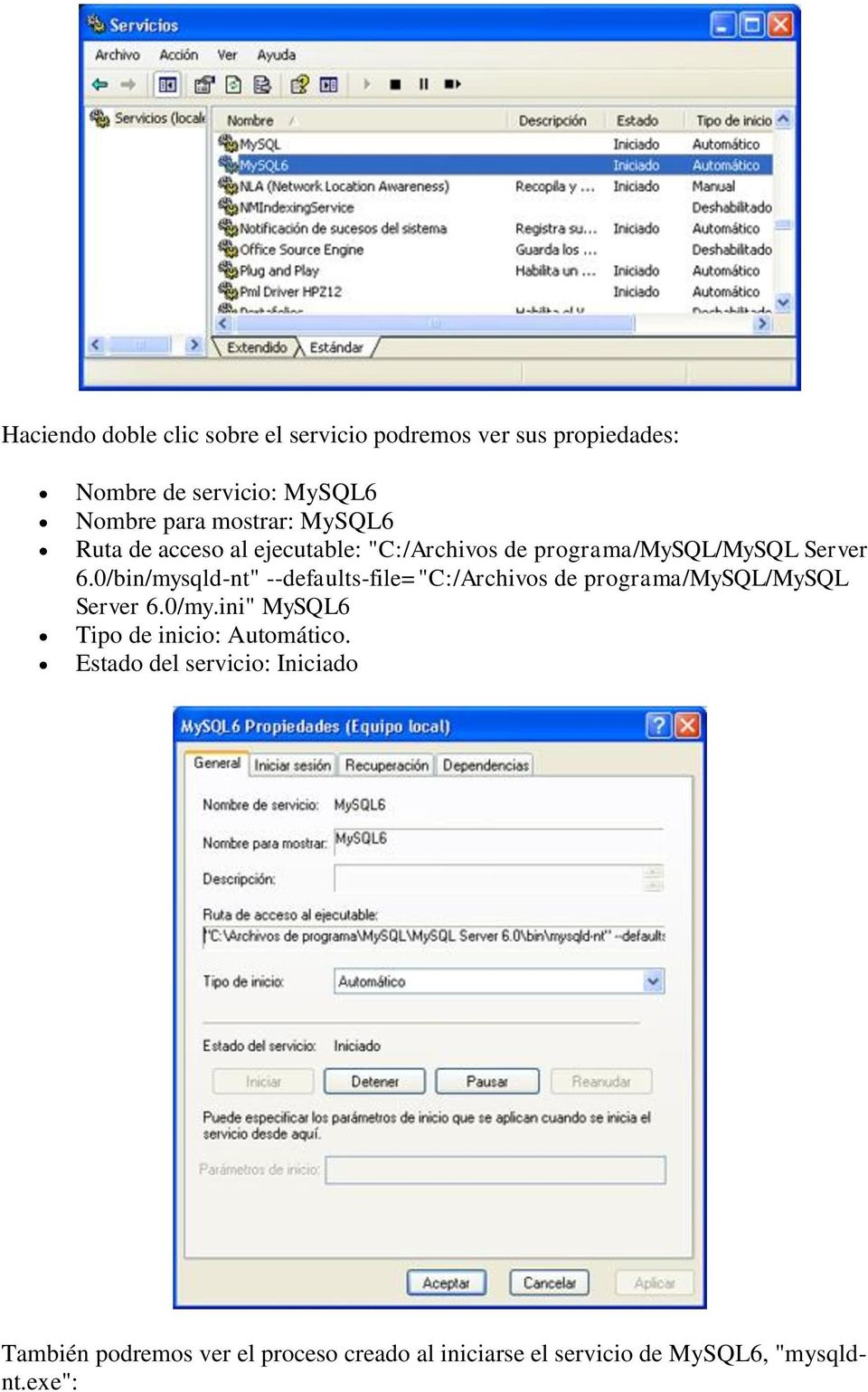 "0/bin/mysqld-nt"" --defaults-file=""c:/archivos de programa/mysql/mysql Server 6.0/my."