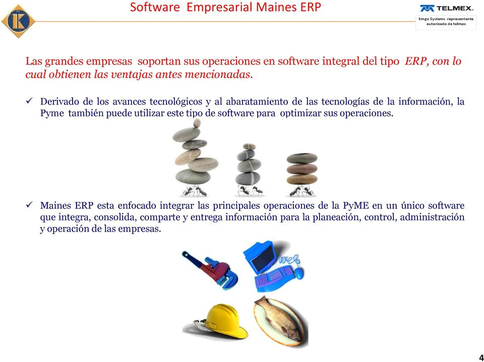tipo de software para optimizar sus operaciones.